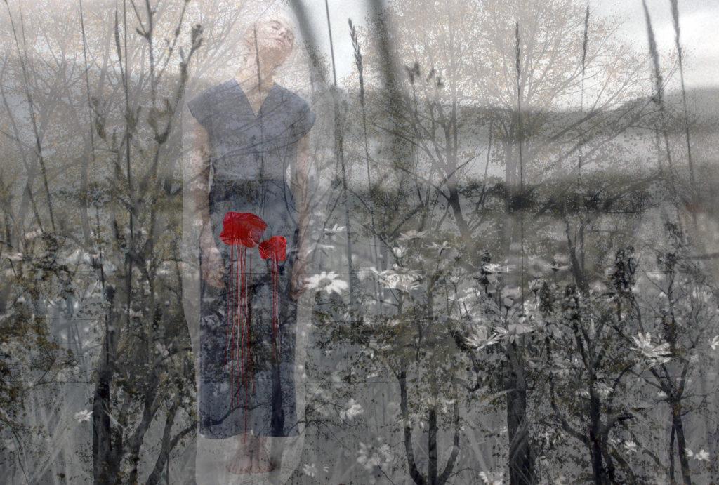 Dievača moodboard , collage : Jana Vaterkova