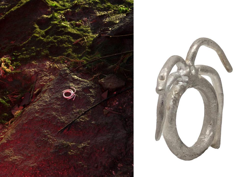 Bestia ring, ph : Federico Vespignani